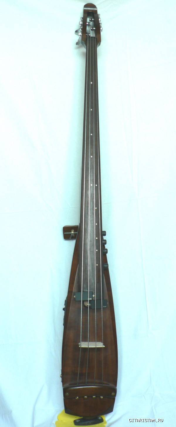 ELECTRIC UPRIGHT D-BASS (Москва) - фото